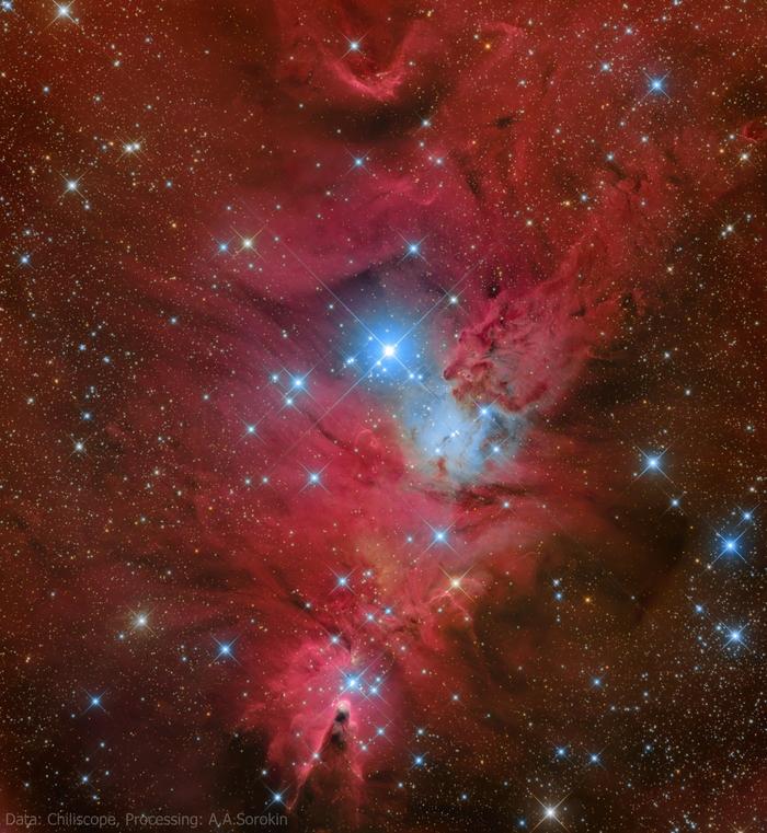 Туманности Лисий мех и Конус в скоплении NGC 2264 Астрофото, Астрономия, Космос, Туманность, Телескоп, Chiliscope, Звёзды