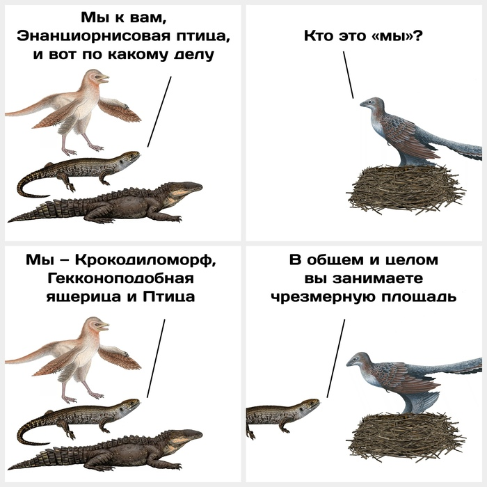 Новость №780: В Румынии нашли гнездо, в котором 70 миллионов лет назад ужились четыре вида животных Образовач, Наука, Палеонтология, Комиксы
