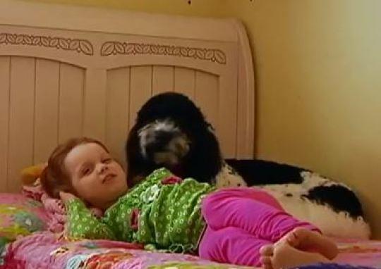 Собака помогает девочке справляться с физической болью Собака, Дети, Длиннопост, Животные