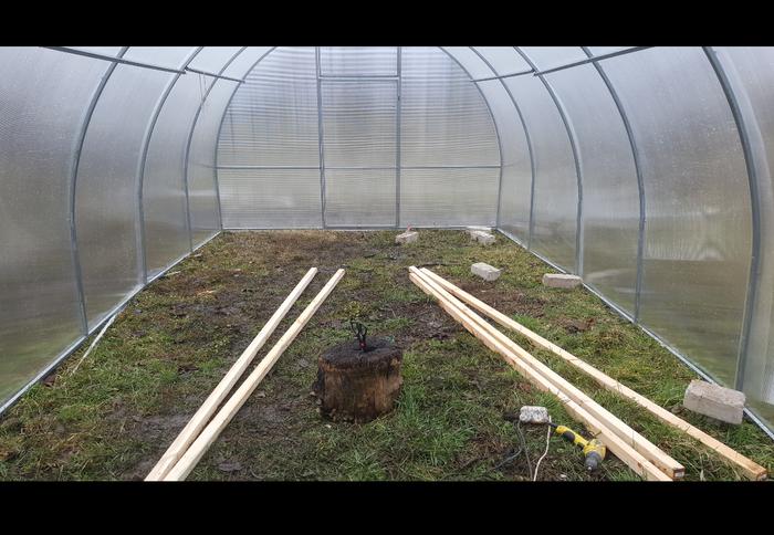 Как я построил свою ферму с микрозеленью. Ферма, Теплица, Огород, Своими руками, Длиннопост