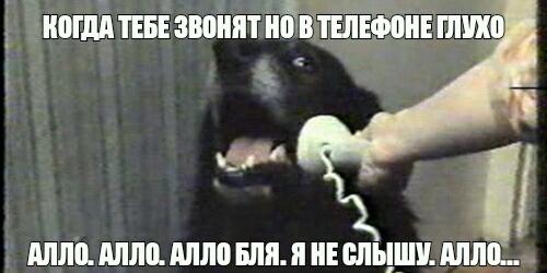 Алло...