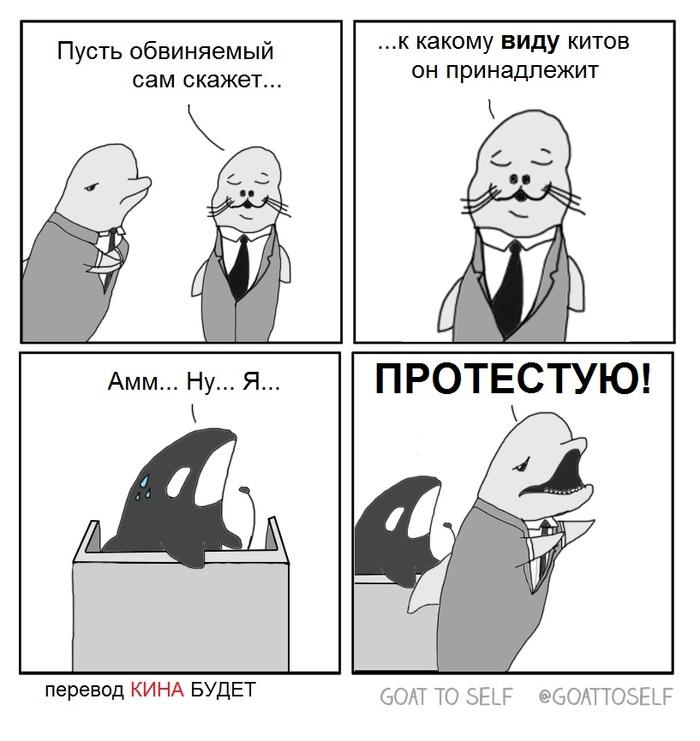 Кит-убийца в суде Косатка, Кит-Убийца, Суд, Прокурор, Комиксы, Goattoself, Адвокат