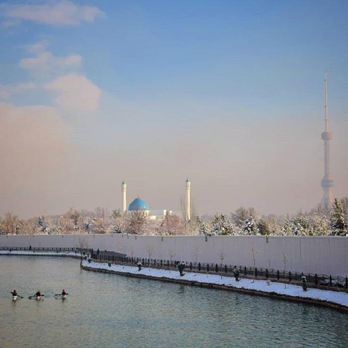 Однодневная зима, Ташкент Зима, Снег, Ташкент, Узбекистан, Фотография, Длиннопост