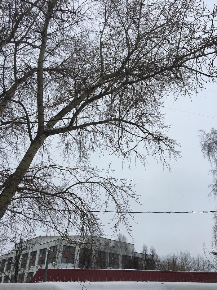 Прошу помощи в определении места Москва (UPD: адрес нашелся). Без рейтинга, Помощь, Москва