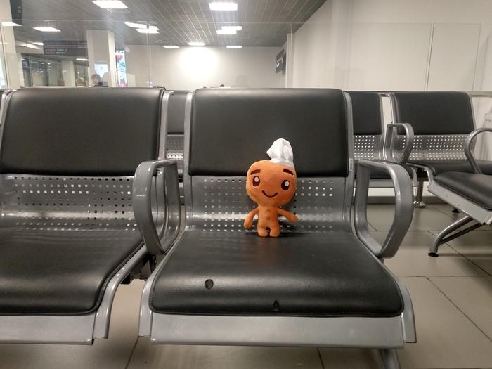 Когда твой рейс задерживают... Аэропорт, Печенька, Задержка рейса, Зал ожидания