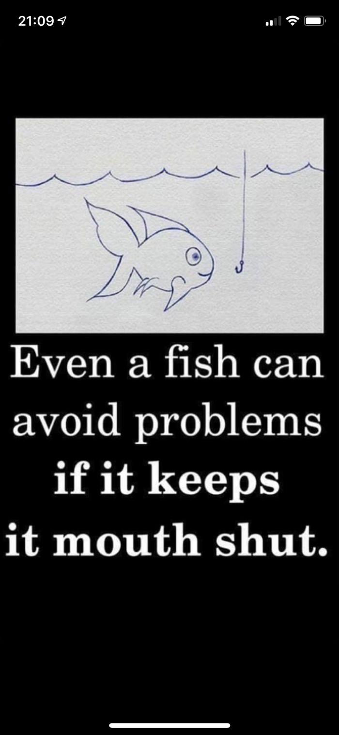 Даже рыбка сможет избежать проблем, если не будет открывать своего рта. Рыба, Мудрость, Длиннопост, Скриншот