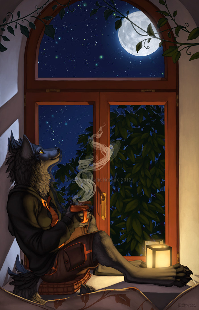 The Moon and I Фурри, Furry Art, Антро, Ночь, Луна, Окно, Wolf-Nymph, Furry artist