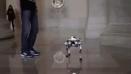 Мы все зря смеялись над этим роботом