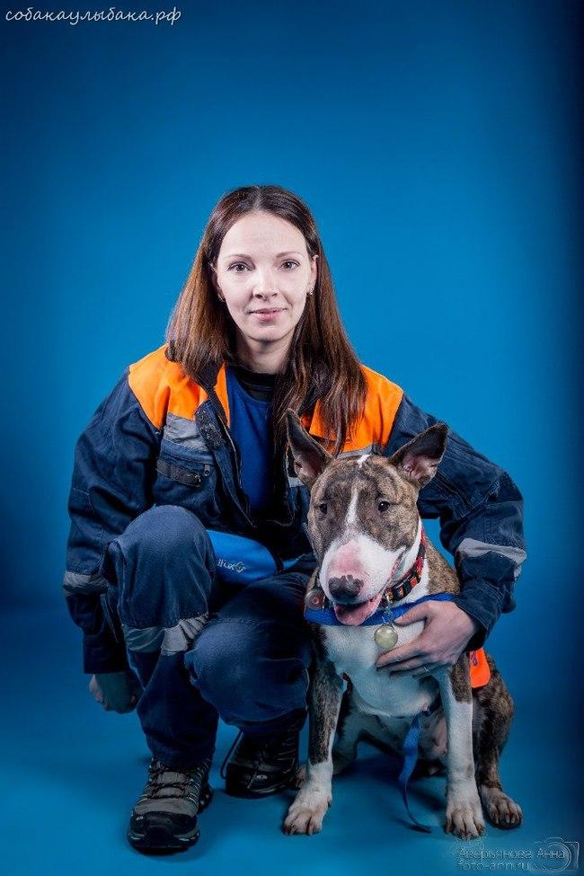"""Собака-спасатель из """"потенциального списка убийц"""" Собака, Собака-Спасака, Псо Экстремум, Поиск, Поиск людей, Длиннопост"""