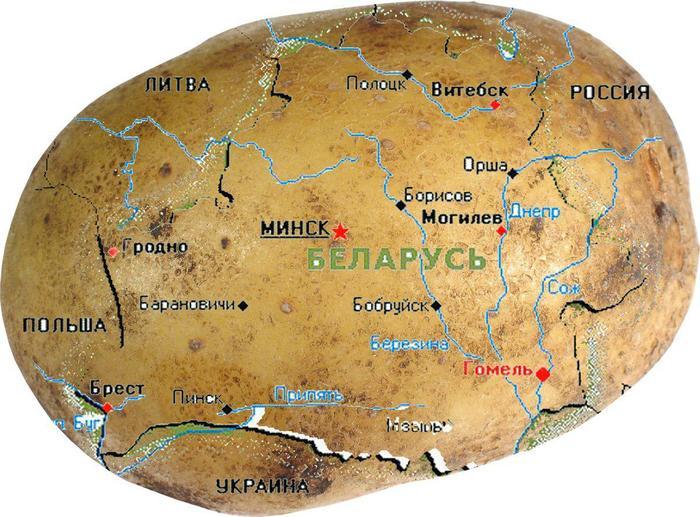 Глобус Белоруссии