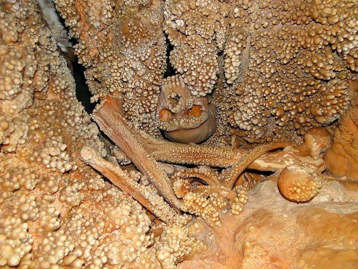 Неандерталец пещеры Ламалунга Антропология, Пещеры, Первые люди, Длиннопост