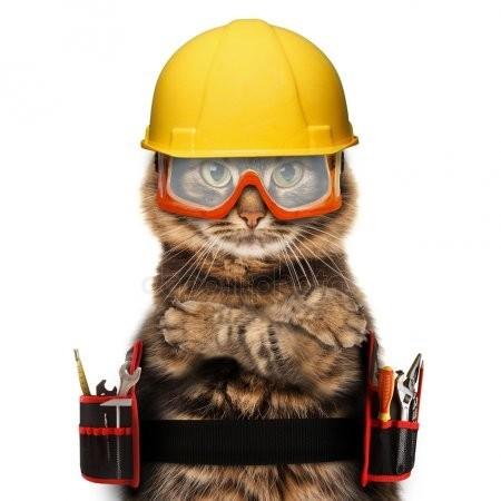 Когда кот с ремонтом помогает Соседи, Помощь, Кот, Перфоратор, Участковый, Закон о тишине, Гифка, Длиннопост, Домашние животные