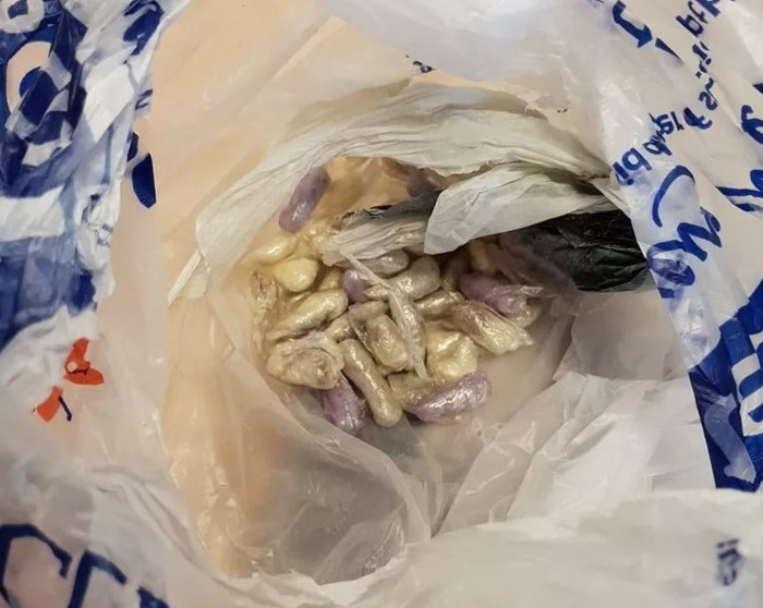 Кот подбросил хозяину наркотики Кот, Наркотики, Домашние животные