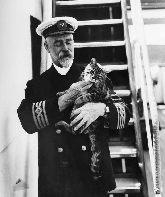 Капитан и кот Кот, Капитан, История, Старое фото, Домашние животные