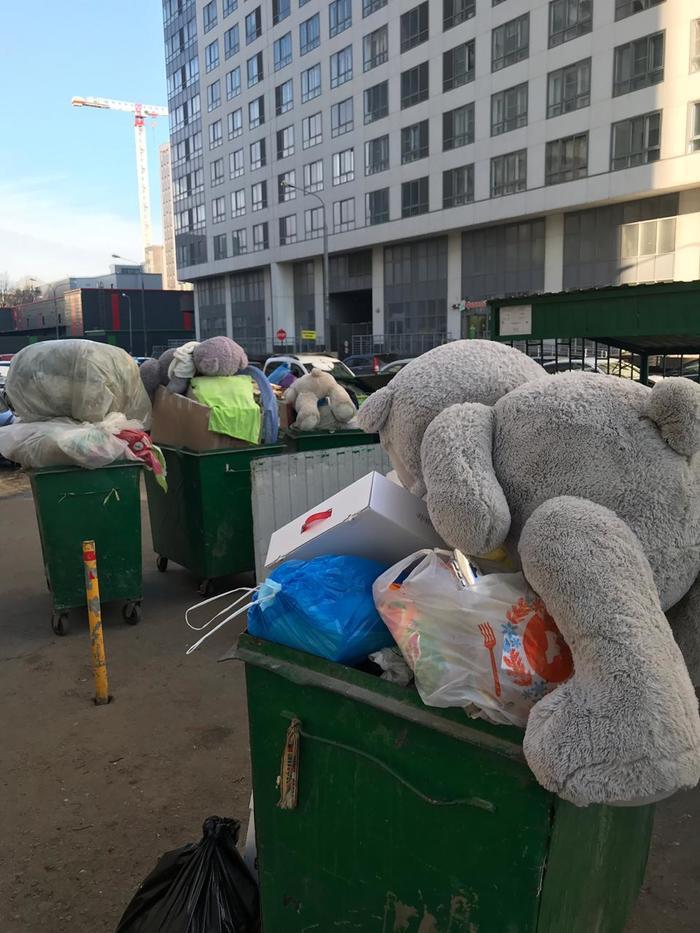Медвежья крипота 14 февраля, 8 марта, Мягкая игрушка, Мусор