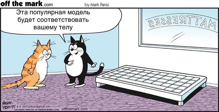 Коты и клавиатуры