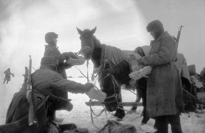 Съедобные башмаки. Великая Отечественная война, Корм, Солома
