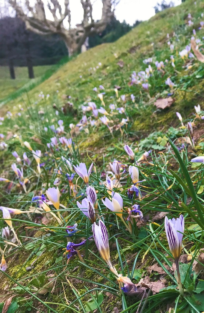 Весна. Начало.
