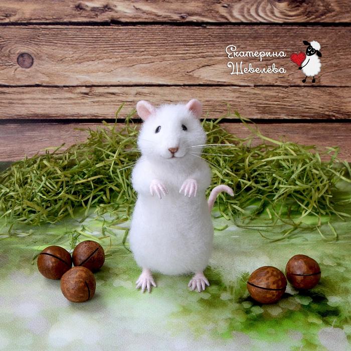 Мышка Зефирка Белая мышка, Мышонок из шерсти, Крыса, Сухое валяние, Длиннопост, Рукоделие без процесса