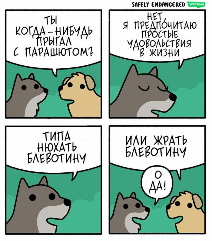 Типичный пёс Safely Endangered, Комиксы, Собака, Юмор, Прикол, Шутка