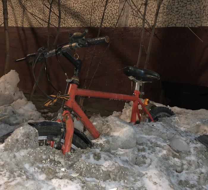 Первые подснежники Снег, Сугроб, Подснежники, Велосипед, Весна