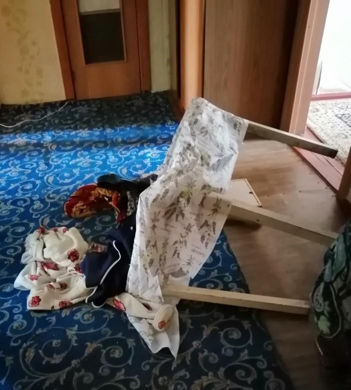 Преступление и наказание Кот, Фотография