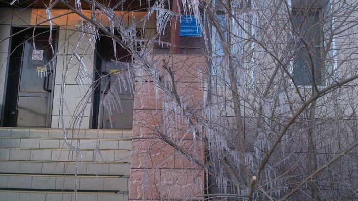 Ледяная мишура. Фото на тапок, Природа, Длиннопост, Сосульки