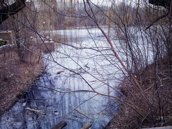 Весна в Донецке Донецк, Фотография, Парк_им_щербакова, Ставок, Длиннопост