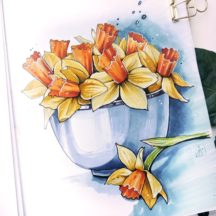 Нарциссы Нарцисс, Цветы, Скетч, Скетчбук, Рисунок, Ваза, Арт, Спиртовые маркеры