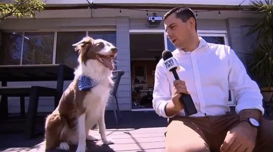 Самое короткое интервью