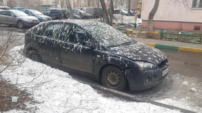 К деньгам Авто, Голубь, Весна, Нижний Новгород, Камуфляж, Фекалии