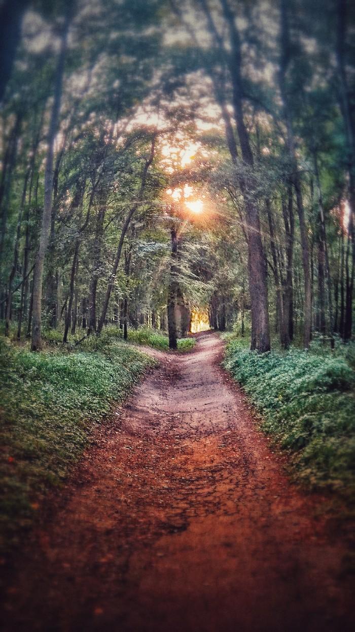 Умиротворение... Природа, Фотография, Фильтр, Первый пост