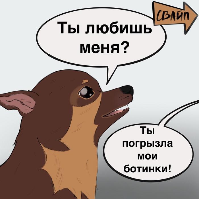 Комикс с гифкой в конце Комиксы, Животные, Видео, Длиннопост, Гифка с предысторией