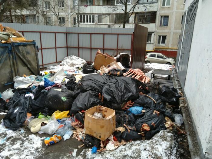 Геологов хочется позвать Москва, Мусорка, Антисанитария