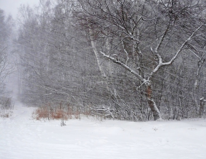 Героическая профессия Relvej, Авторский рассказ, Погода, Метеорология, Выдумка