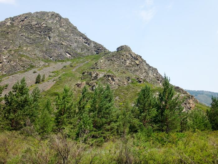 Конный поход по Алтаю. ч.7 Поход, Горный Алтай, Лошади, Фотография, Длиннопост