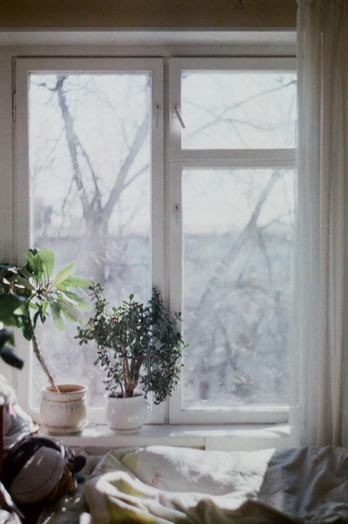 Один год из жизни окна Фотография, Фотограф, Красивый вид, Окно, Природа, Времена года, Искусство, Длиннопост