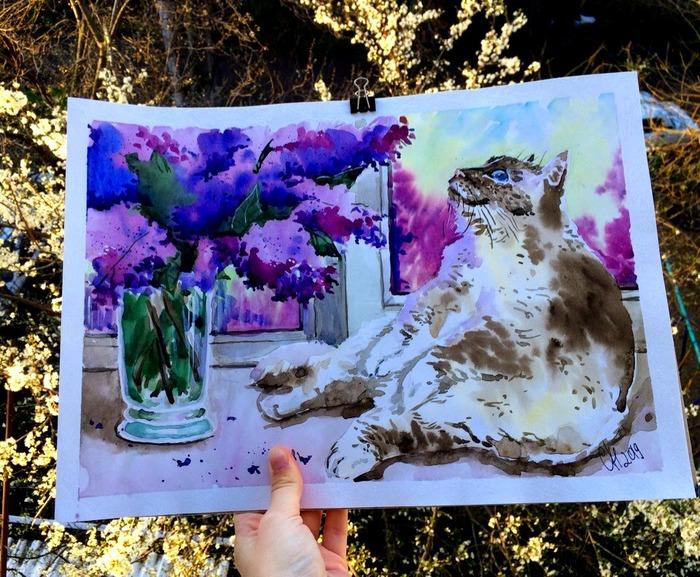 Весенний котан Арт, Рисунок, Акварель, Кот, Природа, Животные, Весна, Цветы