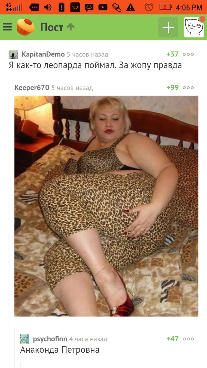 Анаконда Петровна Комментарии на Пикабу, Скриншот, Леопард