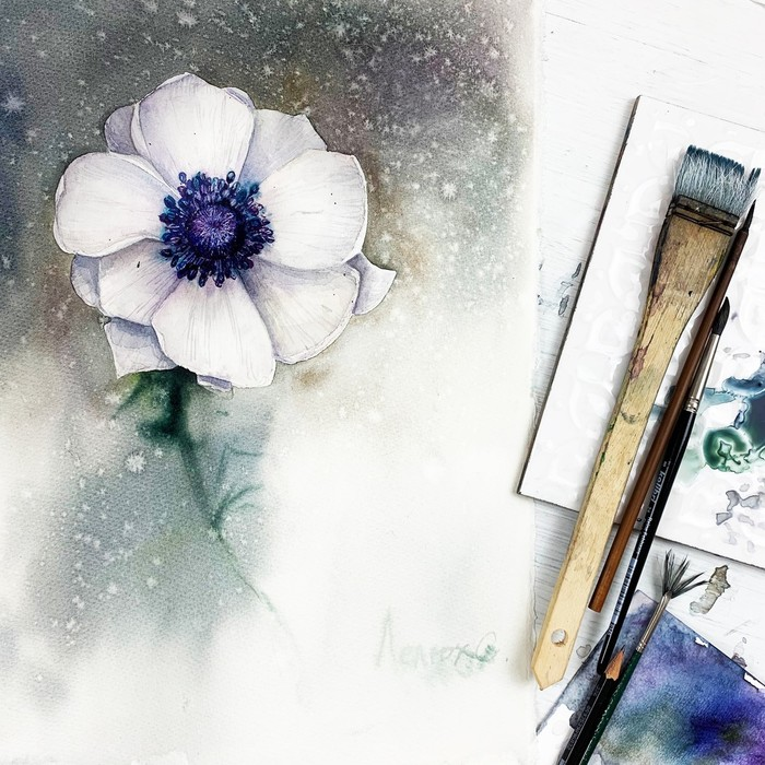 Анемон Акварель, Рисунок, Анемон, Живопись, Видео, Длиннопост, Цветы, Рисование, Мастер-Класс, Процесс рисования