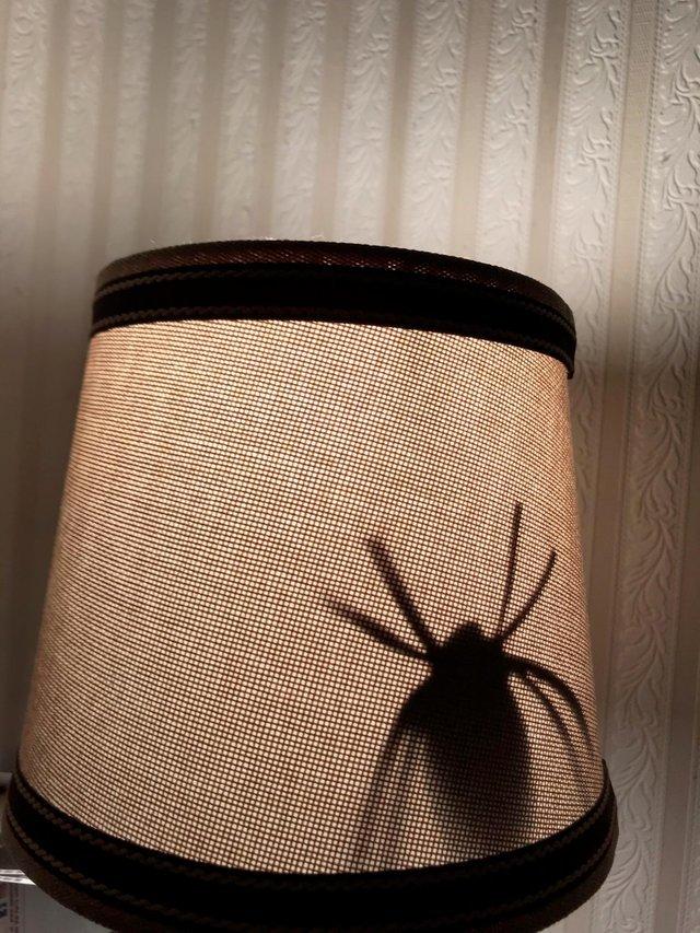 Сын вырезал бумажного паука и приклеил к абажуру жены. Я ещё никогда не был так им горд. Паук, Сын, Жена, Розыгрыш, Длиннопост, Скриншот