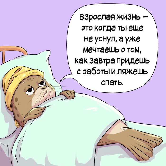 Взрослая жизнь Тюлень, Взрослая жизнь, Комиксы, Иллюстрации, ADME, Длиннопост