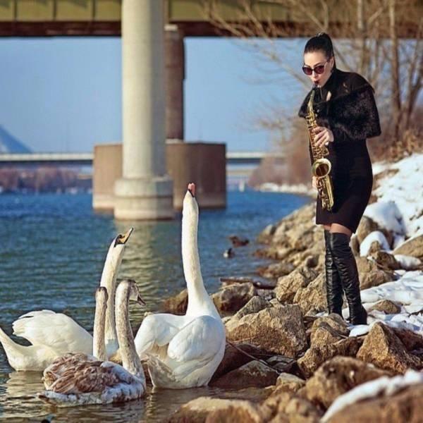 Повелительница гусей-лебедей