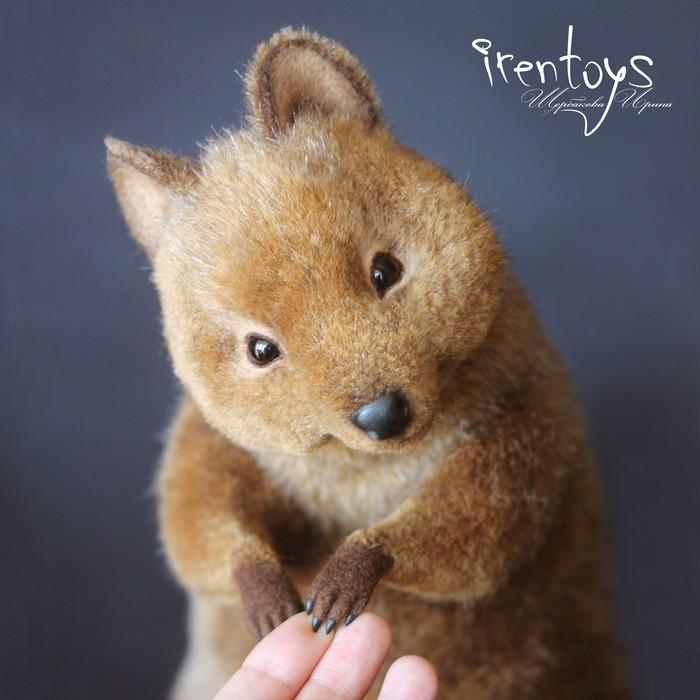 Квокка [игрушка] Ручная работа, Квокка, Irentoys, Реалистичная игрушка, Рукоделие без процесса, Длиннопост