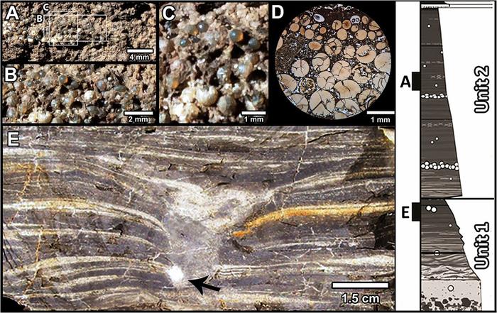 Палеонтологи узнали, как прошел последний час мезозоя Динозавры, Палеонтология, Археология, Длиннопост, Чиксулуб, Метеорит