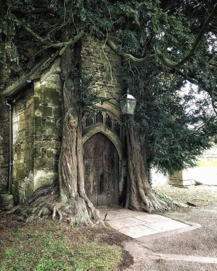 Вход в Морию Толкин, Мория, Властелин колец, Средиземье