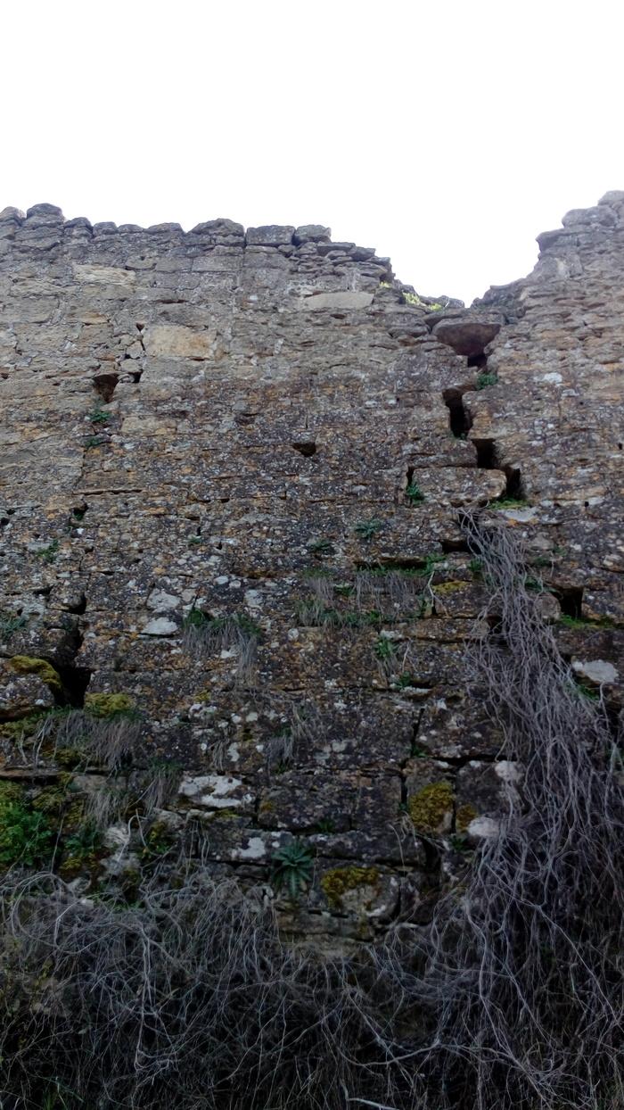 Старая крепость Дети, Селфи, Риск, Длиннопост