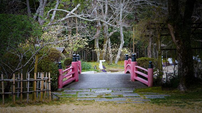 Немного Японии на отечественную оптику Япония, Весна, Нара, Миядзима, Сакура, Длиннопост