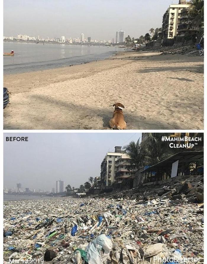 Великая сила интернета Reddit, Мумбаи, Мусор, Пляж, Лига чистомена