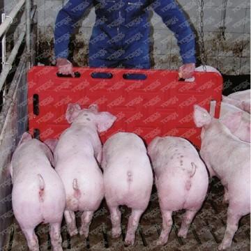 Зоотехнические байки 2 Животноводство, Свинья, Работа, Поросята, История, Юмор, Мат, Длиннопост
